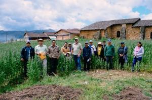 Gemeinsame Besprechung: 2. von links, Frank Friedrich, Vorsitzender des Vereins Alianza e.V. und daneben rechts Julio Puscan Culqui, Vorsitzender der Bauernvereinigung zum Anbau von Quinoa. In der Mitte mit hellem Hemd Andreas Haag.